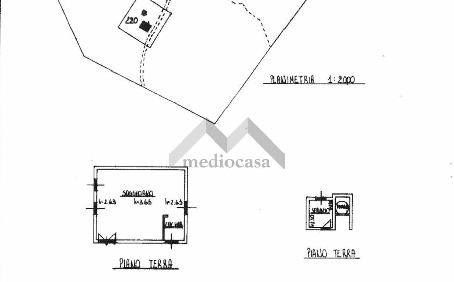 RIF.609 RAMIOLA (4)