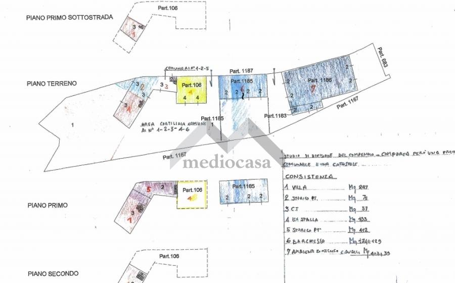 RIF.620 PLN COLLECCHIO